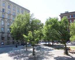 Urban Park with Trees and Building